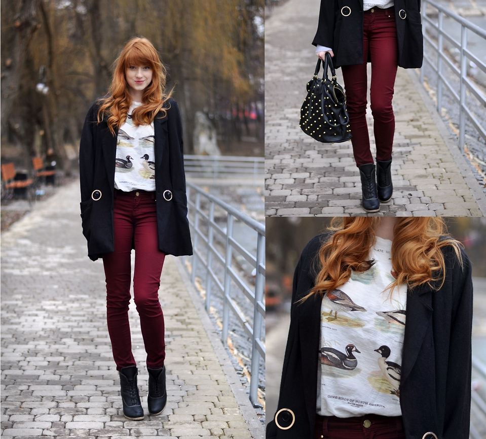 Look do dia: Where do the ducks go in winter?